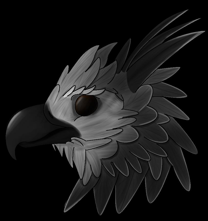 Harpy Eagle by hypnodelic