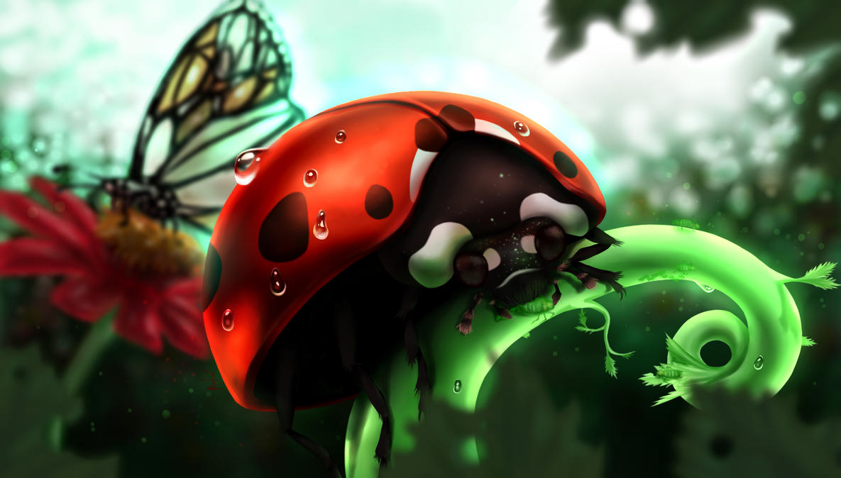 Joaninha - Ladybug by Mangadark
