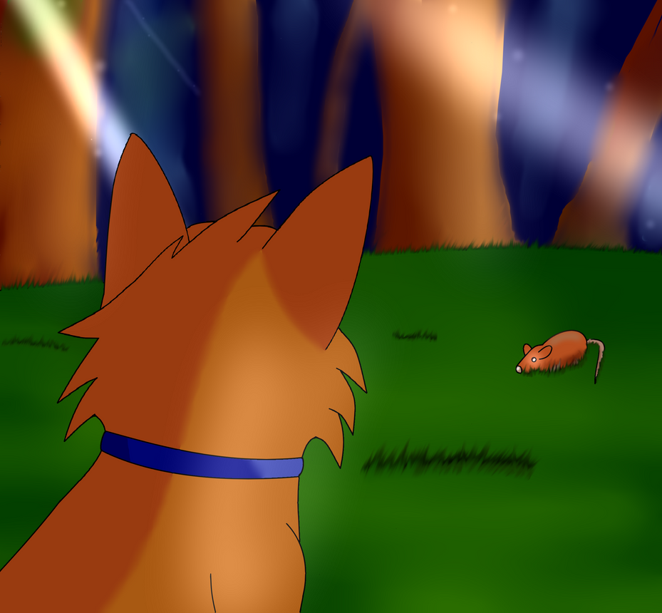Firepaw Dream ( Warriors Into The Wild Fanart ) By Duarte3