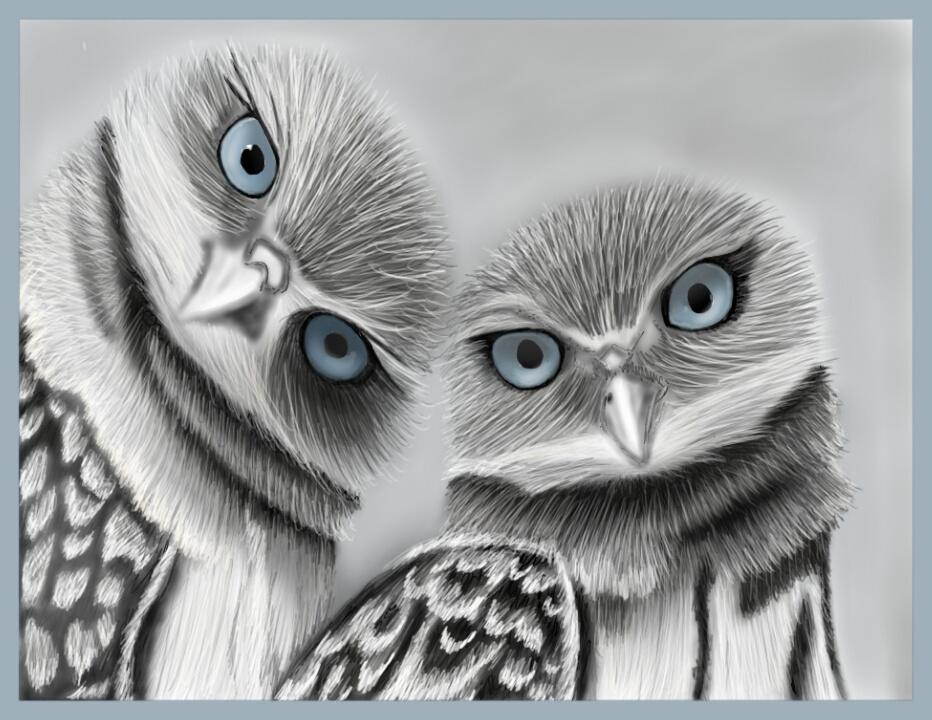 Blue eyed Owls by Faircloth-DigiTalArt