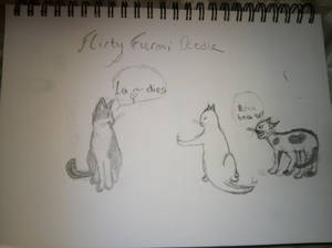 Kitty Doodle
