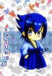 Naruto S : Chibi Sasuke