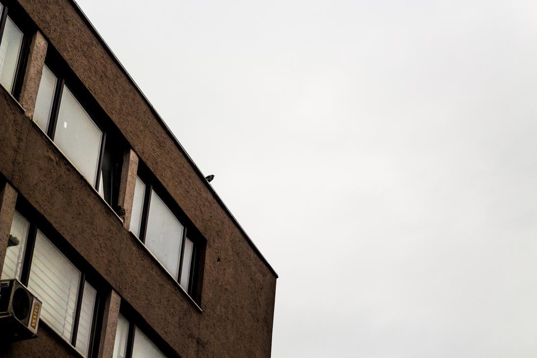 Minimal Crow by kuleli5153
