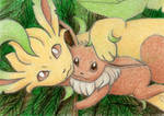 Eevee and Leafeon (ATC)