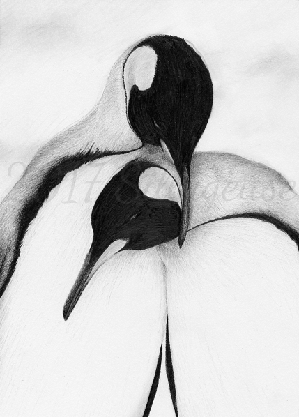 King penguins (pencil drawing) by Sillageuse