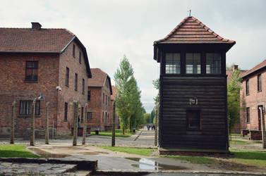 Osvetim - Auschwitz-Birkenau by Poppy-CZ