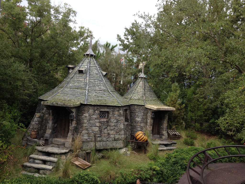Hagrid 39 s hut by dragoon811 on deviantart What house was hagrid in
