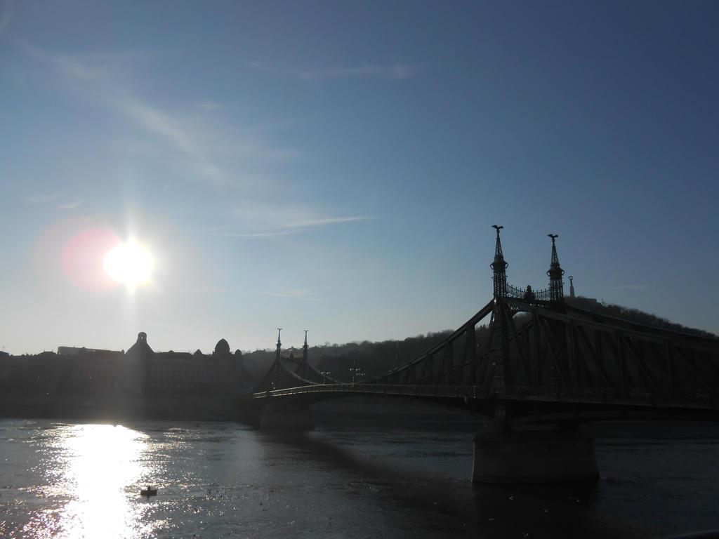 Franz Joseph bridge in Budapest by Szerzetes