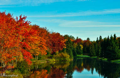 Fall Reflections 2 by Brian-B-Photography