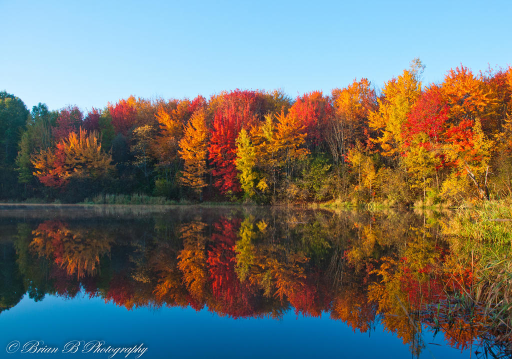 The Splendor of Fall by Brian-B-Photography