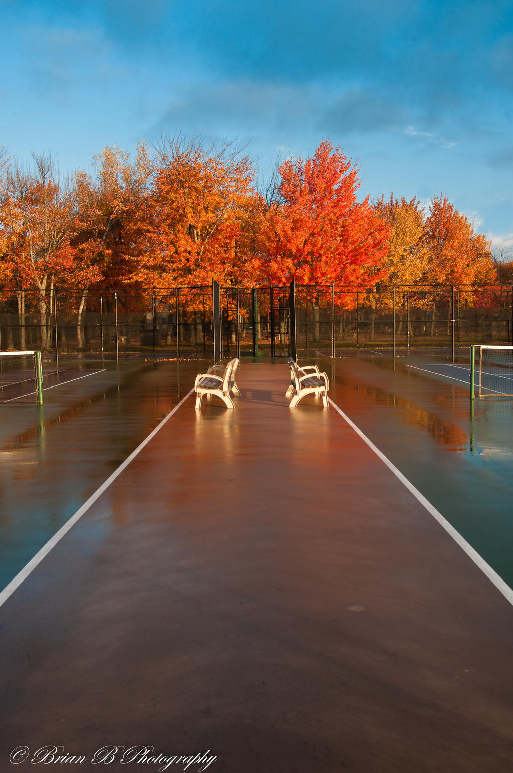 Tennis ?..Anyone ? by Brian-B-Photography