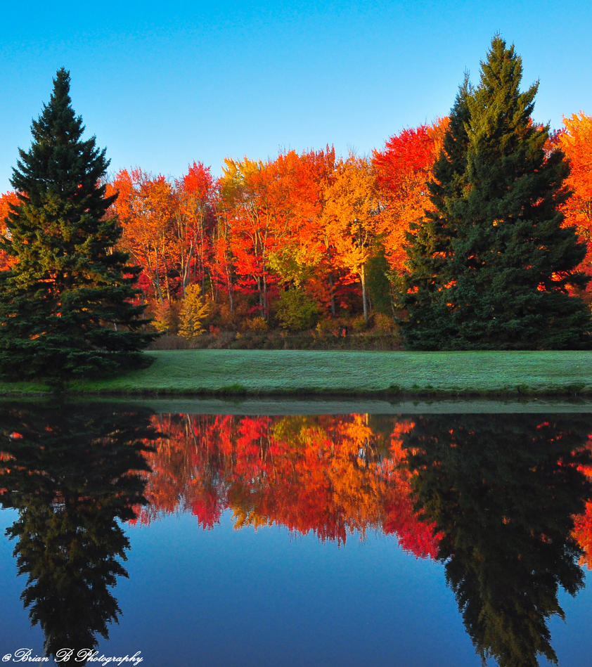 Autumn Symmetry by Brian-B-Photography