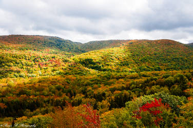 Cape Breton Highlands by Brian-B-Photography