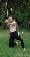 Daven the Archer 25