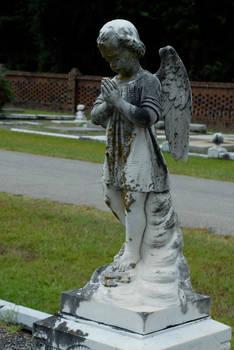 Taylor Jackson Cemetery 12