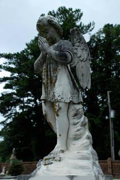 Taylor Jackson Cemetery 13