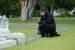 Taylor Jackson Cemetery 25