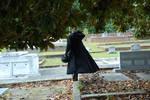 Taylor Jackson Cemetery 29