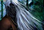 Honglath :: Seeking in the Forest