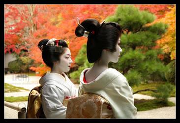 Autumn Viewing :: Geisha by DrowElfMorwen
