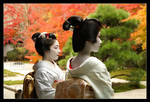 Autumn Viewing :: Geisha