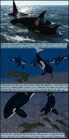 Song of the Ocean : Page 7