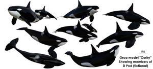 D-Pod :: Orca Model Corky