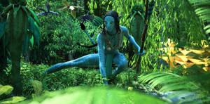 Aynat'mey :: Deep Forest