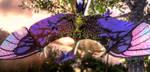 Riti :: Stingbat by DrowElfMorwen