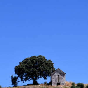 Somewhere in Portugal 130