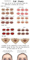 Lip Study by MurphAinmire