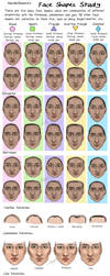 Face Shapes Study by MurphAinmire