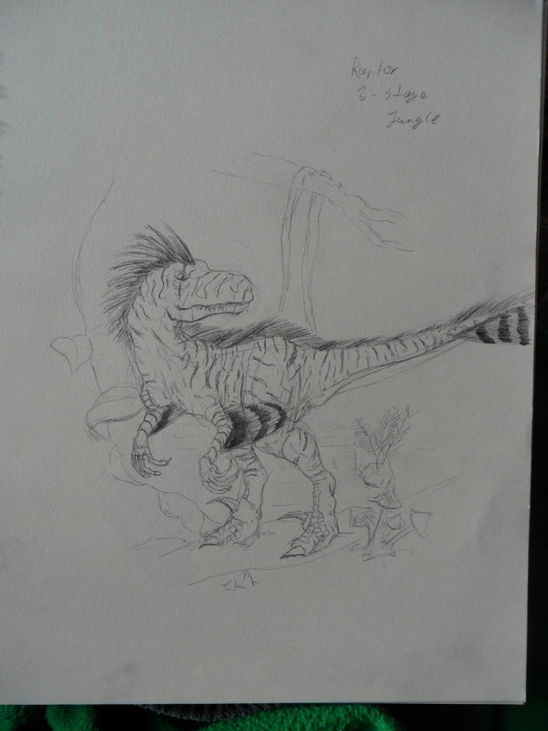 3rd Stage Raptor - Jungle Vesion by Milvolarsum