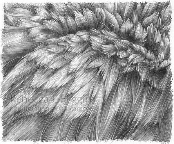 Wolf fur by rlhIllustration
