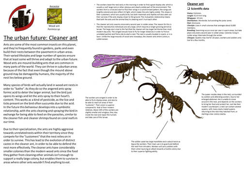 Urban future - Cleaner ant