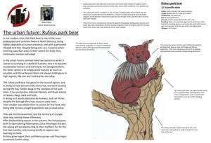 Urban future - Rufous park bear
