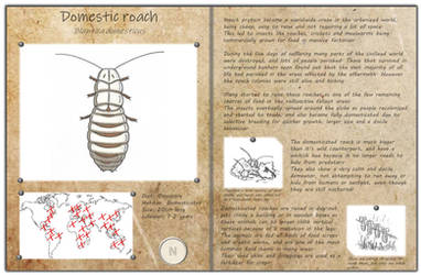 Technological fantasy - Domestic roach