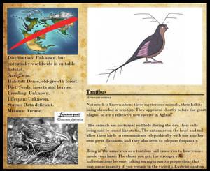 Encyclopedia of Aglaia - Tantibus