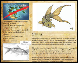 Encyclopedia of Aglaia - Golden carp