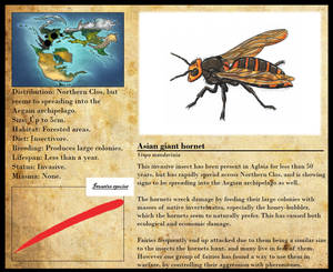Encyclopedia of Aglaia - Asian giant hornet