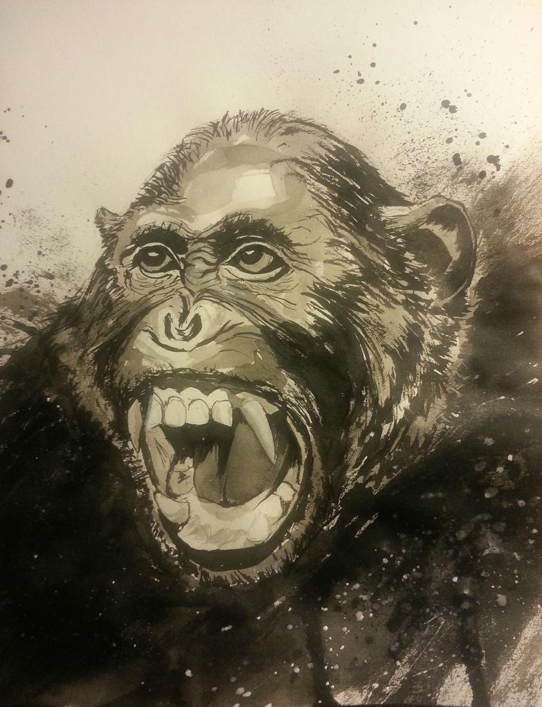 Chimpanzee by azules847