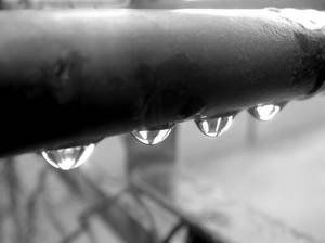 Drops on a rail