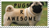 Pugz R Awesome by BearMaster9013