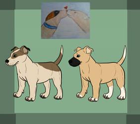 pitbullterriers | Explore pitbullterriers on DeviantArt