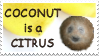 Coconut is a Citrus by OpalMist
