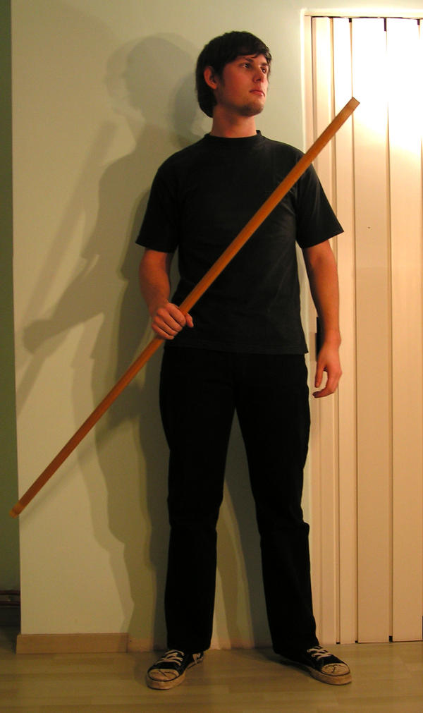 warrior's staff standing3 by syccas-stock