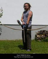 Archer's Longbow 3 by syccas-stock