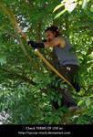 Archer in the Wilderness 8