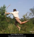 Robin Hood 6
