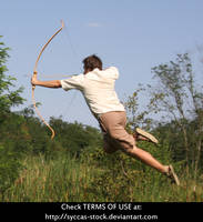 Robin Hood 4 by syccas-stock